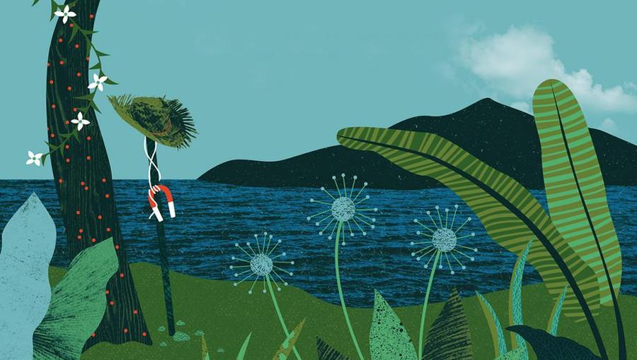 Commandant Coustou, La Vie Vieux Nègre, Magnetic Islands, Cover, Reprise, twoubadou, musique haïtienne, coupé cloué, Trio Select, Gesner Henry