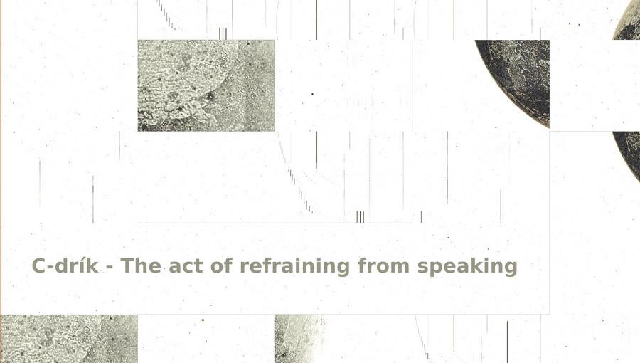 C-drík, The act of refraining from speaking, musique experimentale, musique electro-acoustique, minimaliste, syrphe, nouvel EP, sobre, Cedrk Fermont, ambient, noise, gong, violoncelle