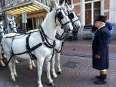 Amsterdam horses 2 - Copy - Copy
