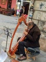 Bratislava musician - Copy - Copy
