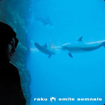 Raku – Emite Semnale  (Chill Brothers – 2011)