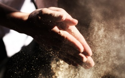 Working for Individuals with Chemical and Dust Sensitivities