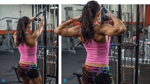 erin_sterns_elite_body_back_1