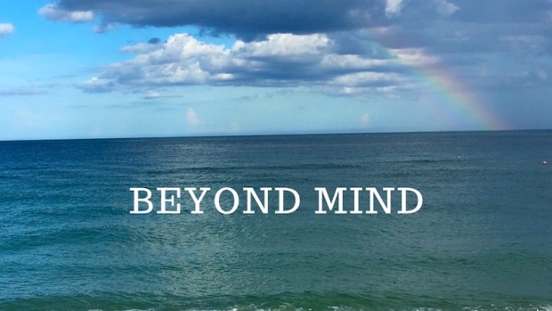 beyond mind group coaching DK Brainard Tatiana Sakurai