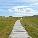 開きの哲学としての天職創造
