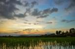 Sunrise-0708
