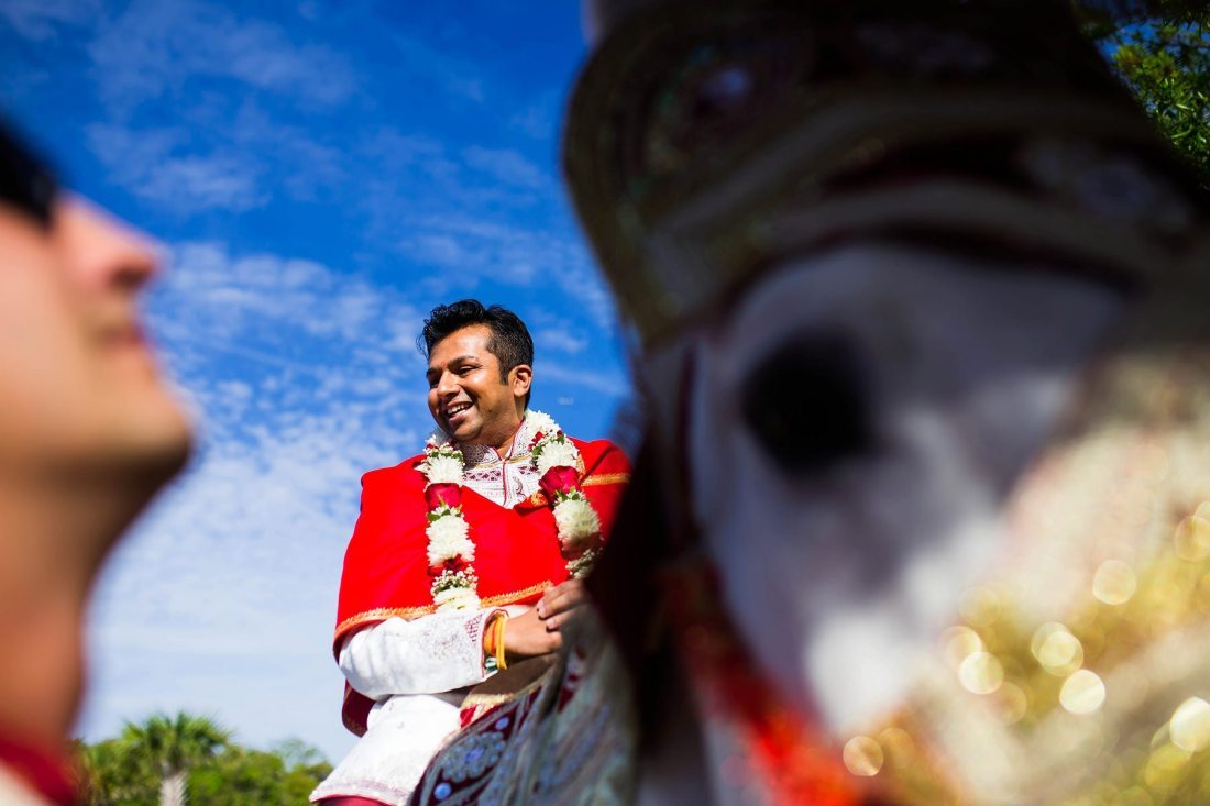 Best Wedding Photographs 2015 - Portraits