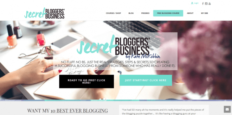 secret blogger business