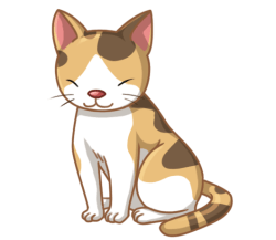p353_cat