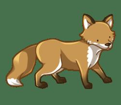 p354_fox