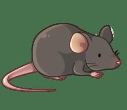 p357_mouse