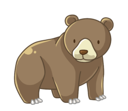 p364_Bear