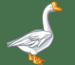 p375_goose