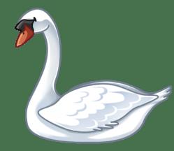 p381_swan