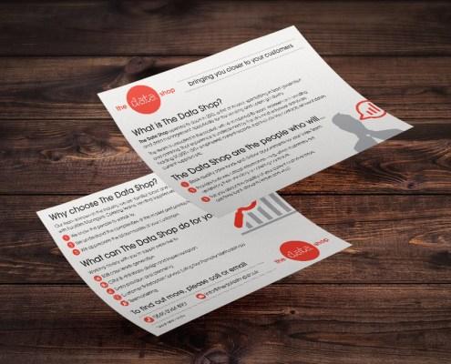 The Data Shop Graphic Design Artwork Print PDF Flyer
