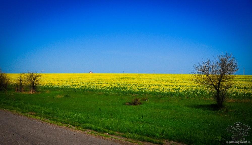Podróż Życia, Ukraina