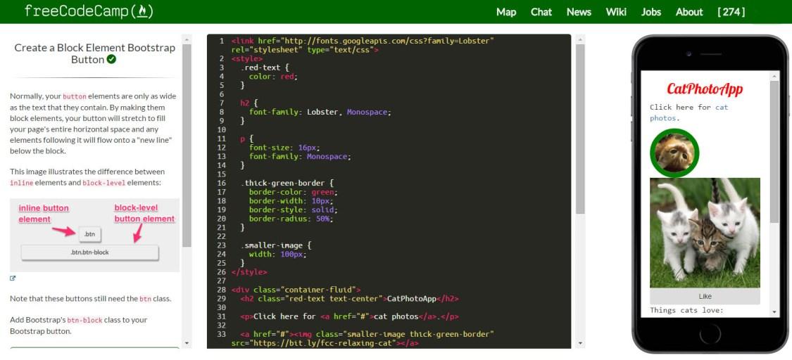 freeCodeCamp environment