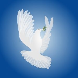 8870-dove-peace