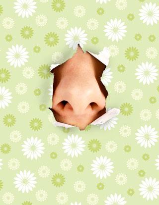 human-nose
