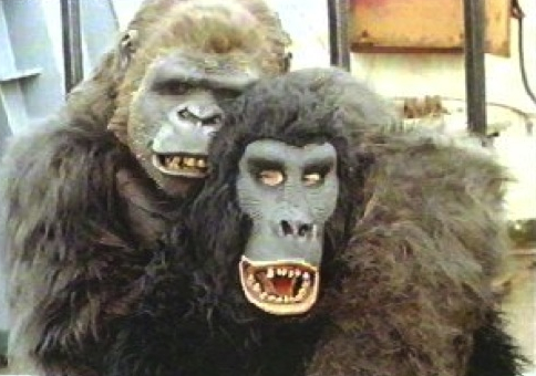 Image result for clarence beeks train gorilla