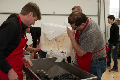 Greg & Brian Pencak destemming and crushing grapes