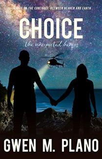 The Choice by Gwen Plano