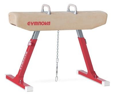 Gimnasticheskii kon makhovyi