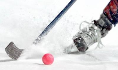 Хоккей с мячом. Игра и правила. Экипировка и особенности