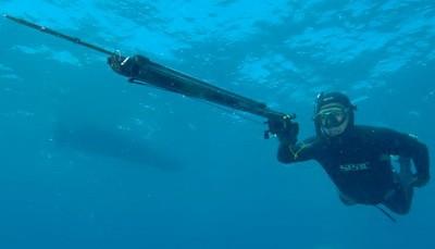 Ружье для подводной охоты. Виды и применение. Как выбрать