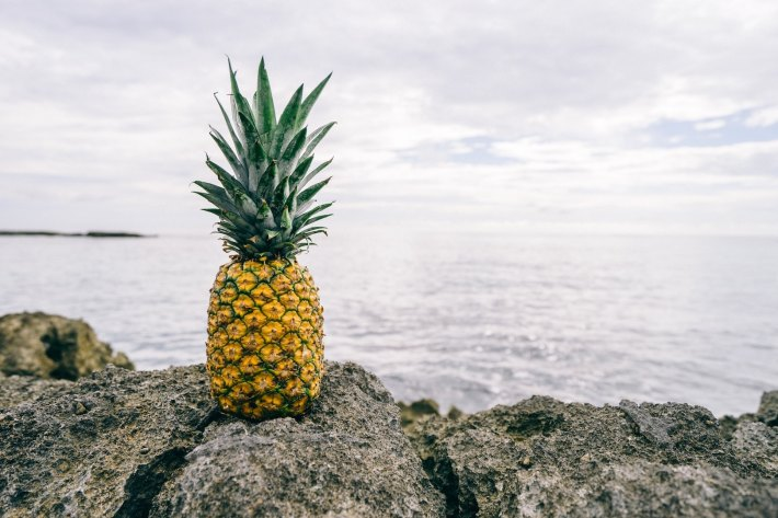 Image by Pineapple Supply Co. on Unsplash