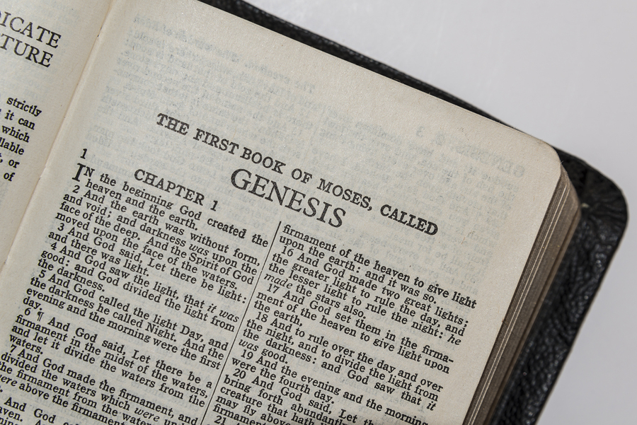 My New Appreciation for Genesis 1 and the Crazy Characters God Places on the Earth
