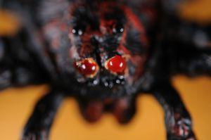 spider2_3