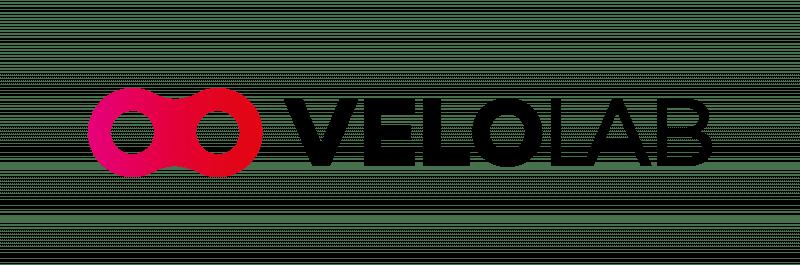 logo velolab bikefitting fizjoterapia