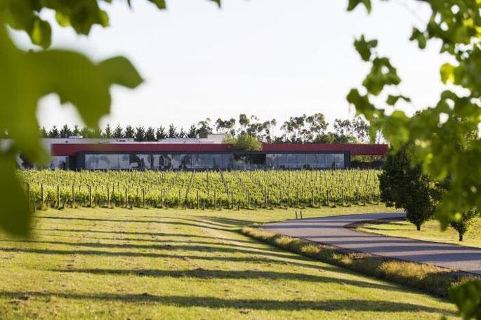 Oakridge Winery, Yarra Valley.