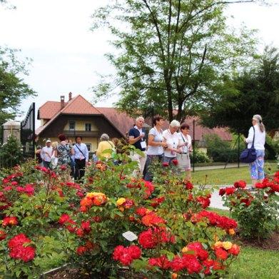 rose-convention-2017-slovenia-047