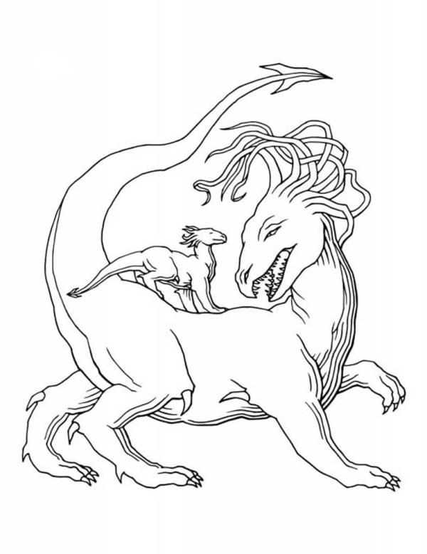 Раскраски Драконы. Раскраски с волшебными драконами из сказок.