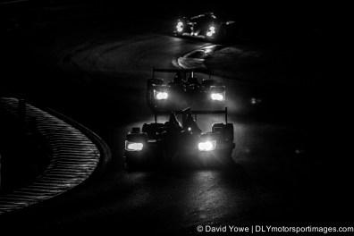 The Esses (Le Mans, France)