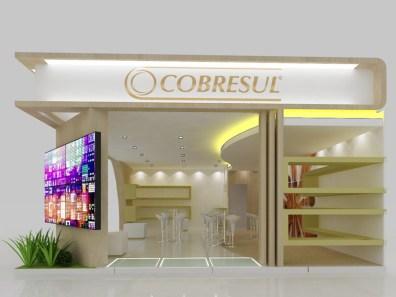 Cobresul - Febrava'15 - img - r00 -0002