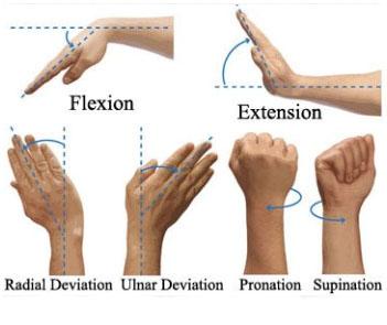 Hand movements