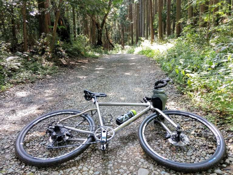 titanium bike laying on the track in the woods