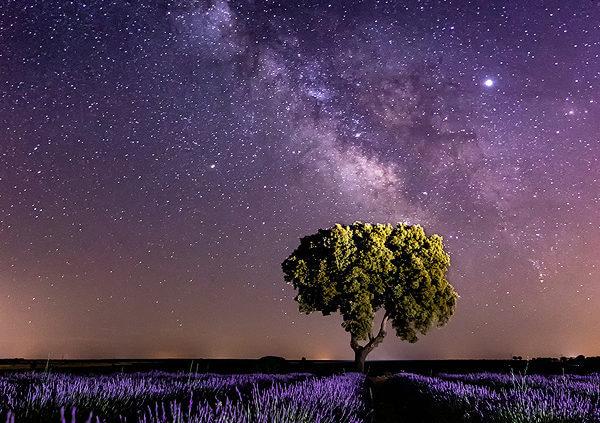 Cómo fotografiar estrellas y la Vía Lactea –  Foto nocturna y Astropaisaje