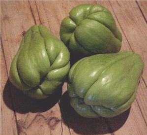 Babel de plantas, frutas y verduras: ¿llegaremos a ponernos de acuerdo? (1/6)
