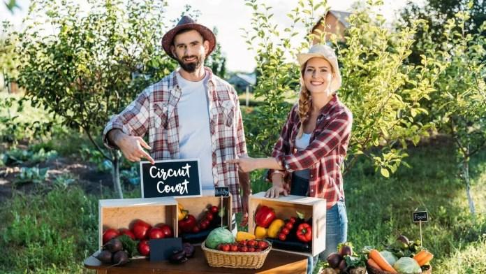 achat de fruits et légumes chez le producteur