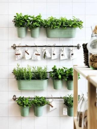 ikea plantes aromatiques