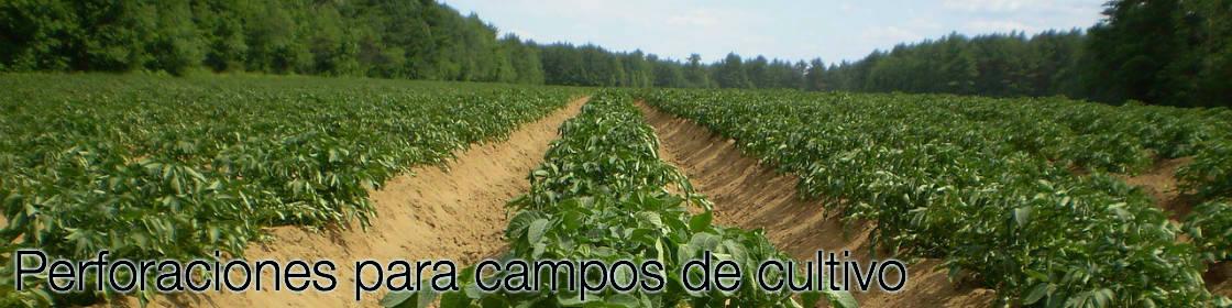 Perforaciones para campos de cultivo