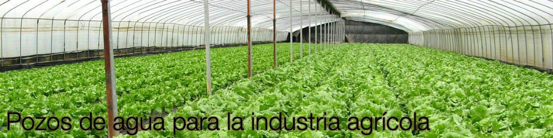 Perforaciones  y pozos de agua para la industria agrícola