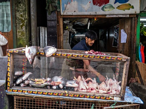 Fish and chicken stall, Ghum (Ghoom)