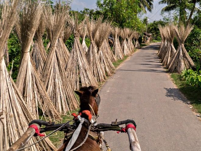 Lane to Katra Mosque, Murshidabad, West Bengal