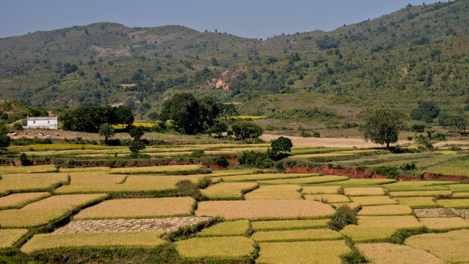 View from the Araku Valley train
