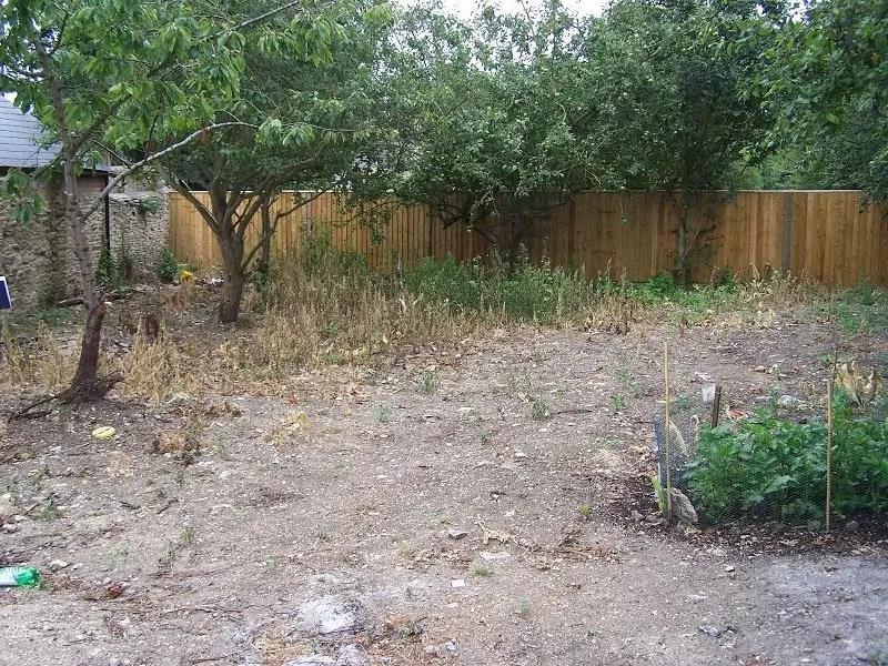 DMW Landscapes Vegetable Garden 1 1
